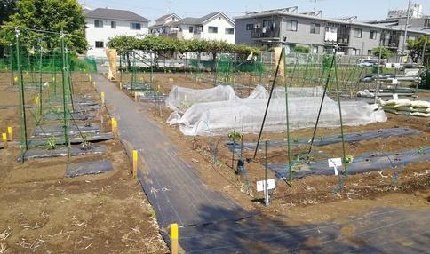 狛江の貸し農園